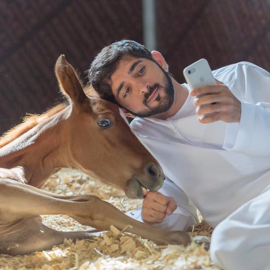 Sheikh Hamdan Video December 2017