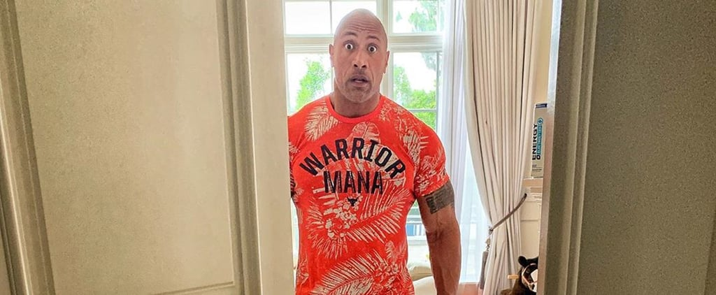 Dwayne Johnson's Reaction to Putting Together a Barbie House