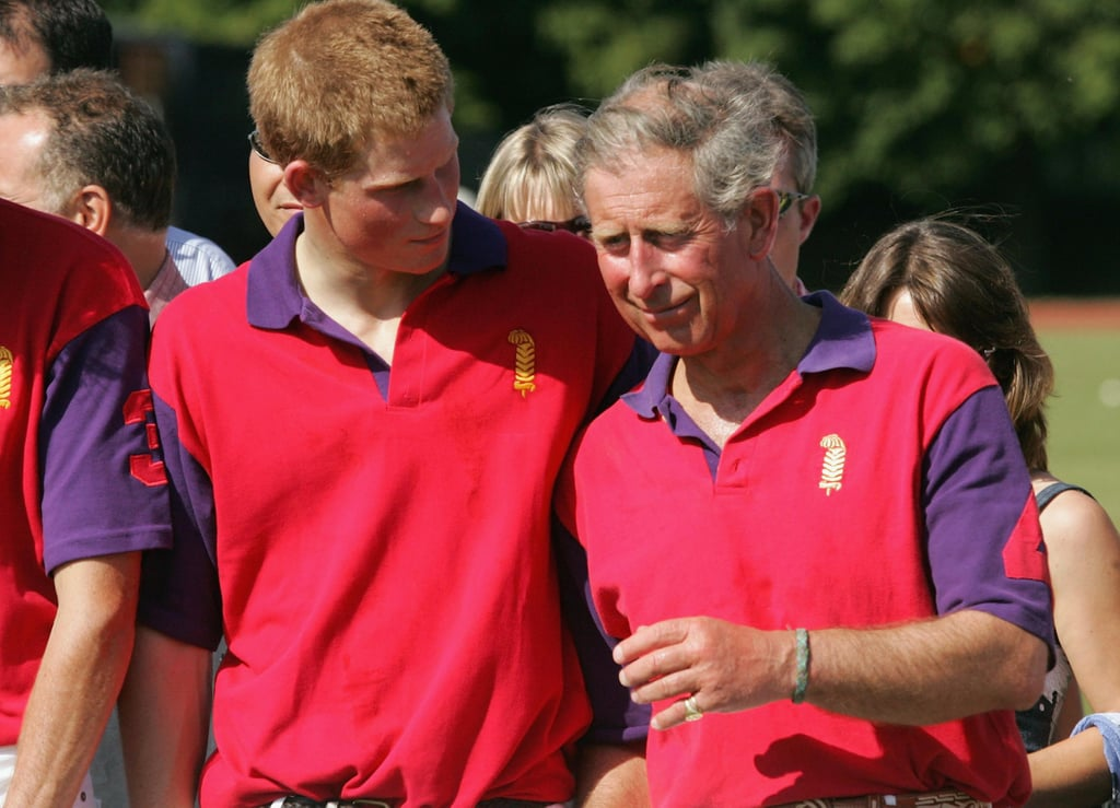 Prince Harry and Prince Charles shared a joke at a 2005 polo match.