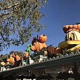 The park entrance is complete with pumpkin Mickey and friends.