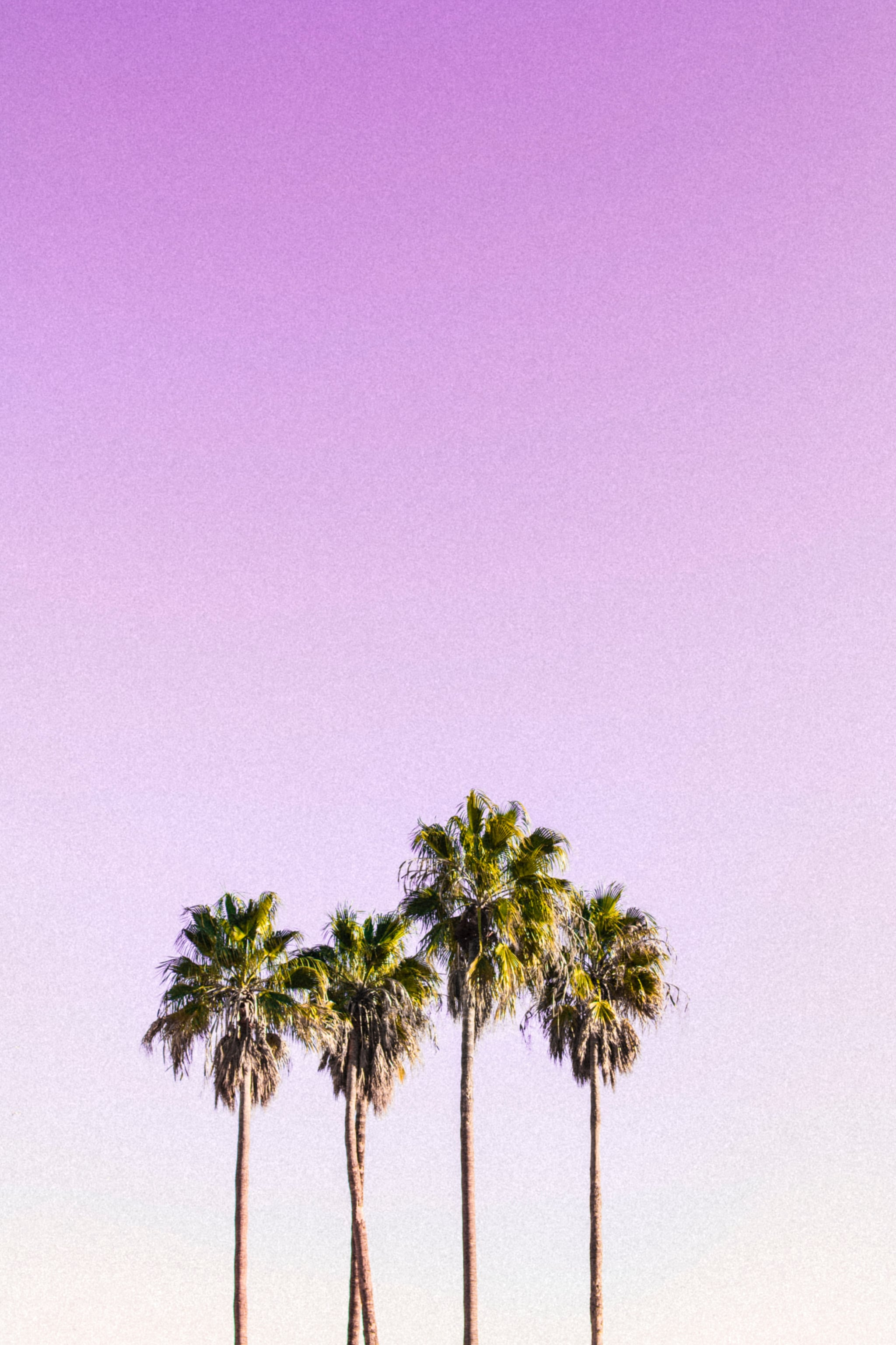 Best Ios 14 Wallpaper Ideas For Your Home Screen Aesthetic Popsugar Tech