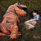 Mom Has Dinosaur Photo Shoot For Son With Autism