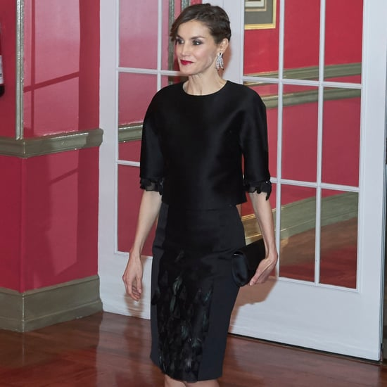 Queen Letizia's Feather Dress February 2017
