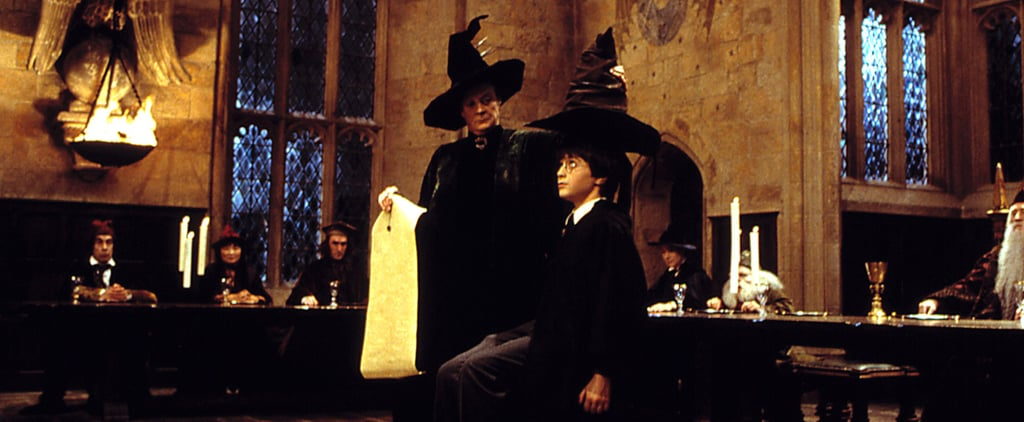 Harry Potter Sorting Hat Is Biased Theory