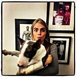Cara Delevingne cuddled with a dog at Marc Jacobs's office. Source: Twitter user Caradelevingne
