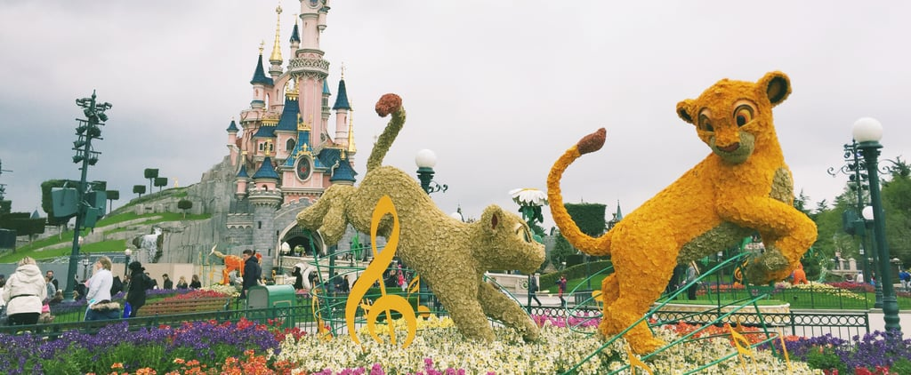 The 20 BEST Things About Disneyland Paris