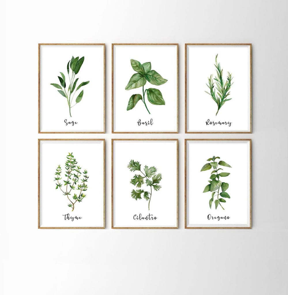Herb Prints  (Set of 9)
