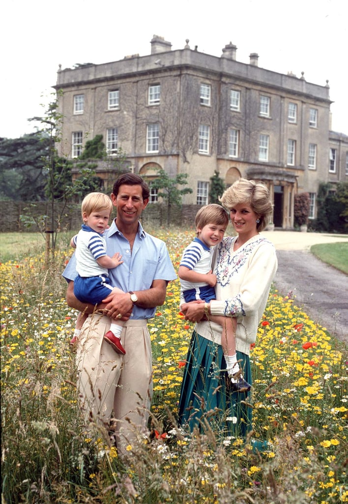 Prince Charles and Princess Diana played with Prince William and Prince Harry in the wildflower meadow at their Highgrove Estate in July 1986.
