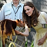 Kate fed a tree kangaroo during the royal couple's visit to Australia in April 2014.