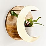 Celestial Plant Shelf