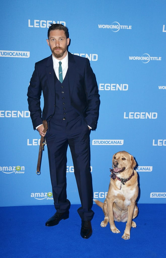 Tom Hardy's dog, Woody, totally stole the show at the actor's Legend movie premiere in 2015.