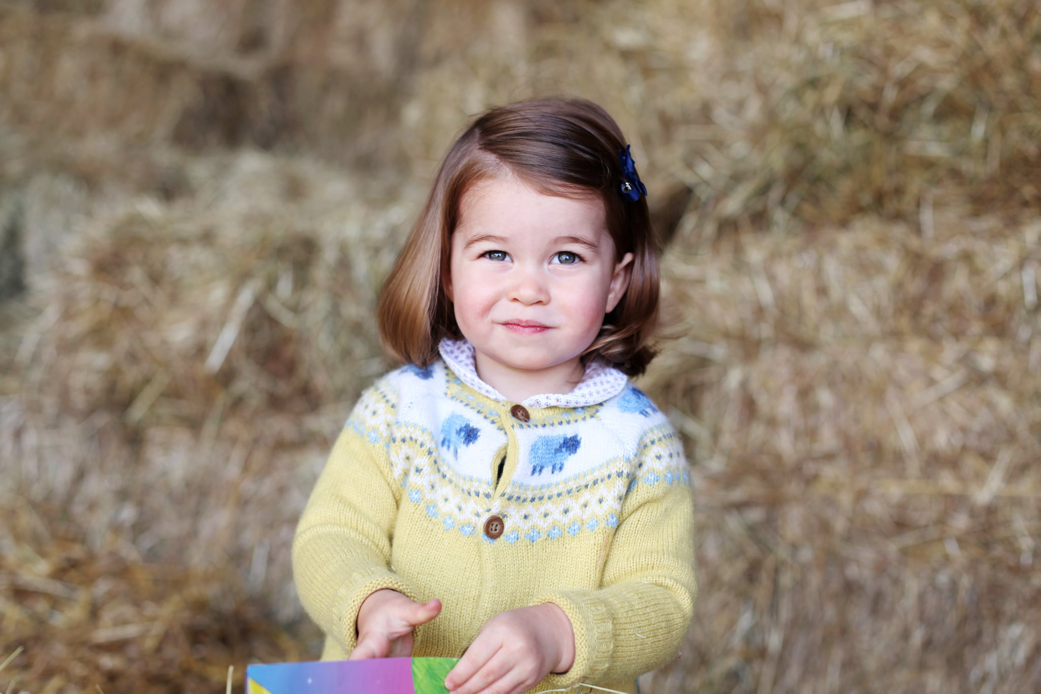 NORFOLK, ENGLAND - APRIL 2017: In this undated handout image released by the Duke and Duchess of Cambridge, Princess Charlotte is pictured at home in April in Norfolk, England. The photograph was taken in April by The Duchess at their home in Norfolk to mark Princess' second birthday. (Photo by HRH The Duchess of Cambridge via Getty Images)NEWS EDITORIAL USE ONLY. NO COMMERCIAL USE (including any use in merchandising, advertising or any other non-editorial use including, for example, calendars, books and supplements). This photograph is provided to you strictly on condition that you will make no charge for the supply, release or publication of it and that these conditions and restrictions will apply (and that you will pass these on) to any organisation to whom you supply it. All other requests for use should be directed to the Press Office at Kensington Palace in writing.NOTE TO EDITORS: This handout photo may only be used in for editorial reporting purposes for the contemporaneous illustration of events, things or the people in the image or facts mentioned in the caption. Reuse of the picture may require further permission from the copyright holder.