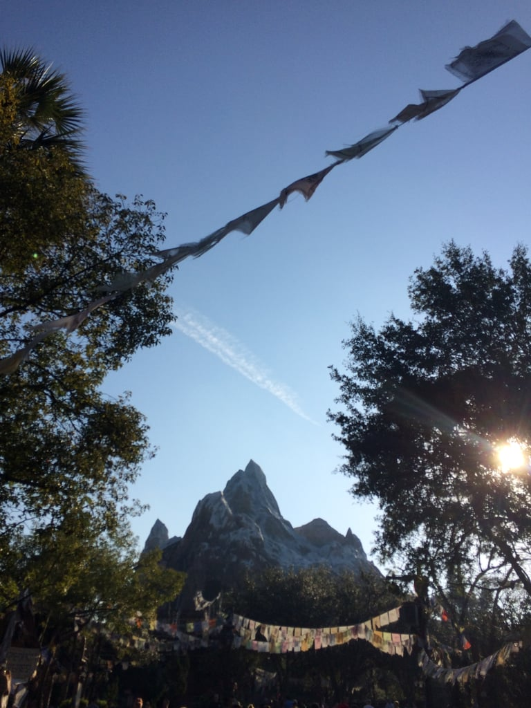 The Yeti Inside Expedition Everest Is Actually Structural Support