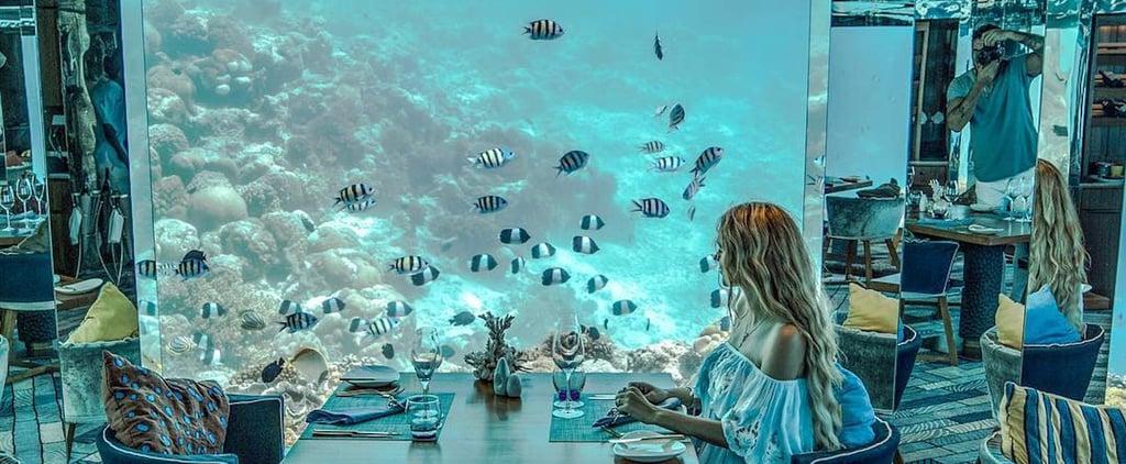 Sea Underwater Restaurant at Anantara Kihavah in Maldives
