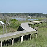 Maryland — Assateague Island National Seashore