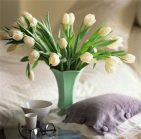 Not a Morning Person? Try Flowers