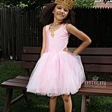 Princess Ballerina Costume