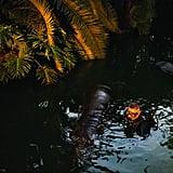 Underwater Attraction Machinist
