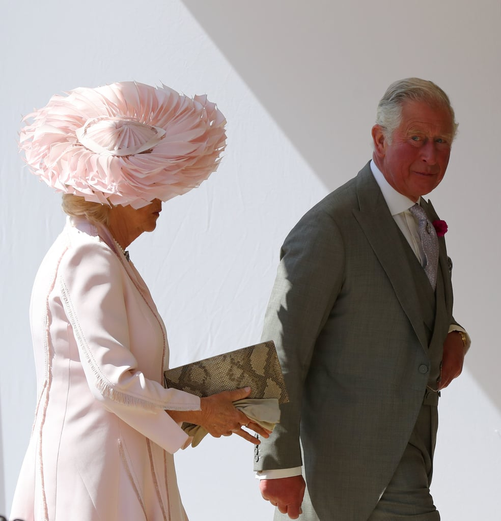 الأمير تشارلز، أمير ويلز، وكاميلا، دوقة كورنوال