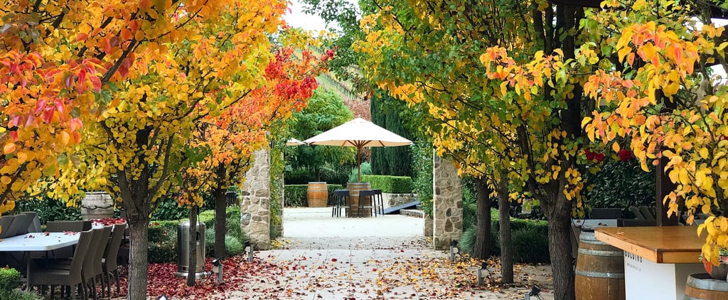 Best Things to Do in Adelaide Hills