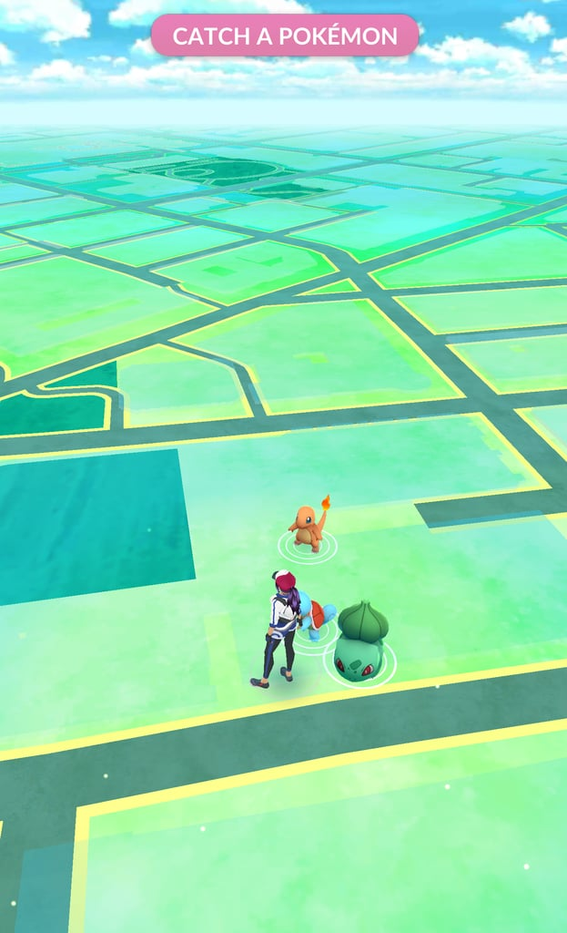 Catch your starter Pokémon.