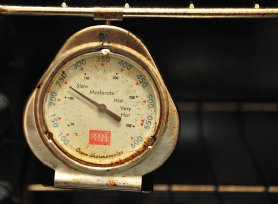 Do You Have an Oven Thermometer?