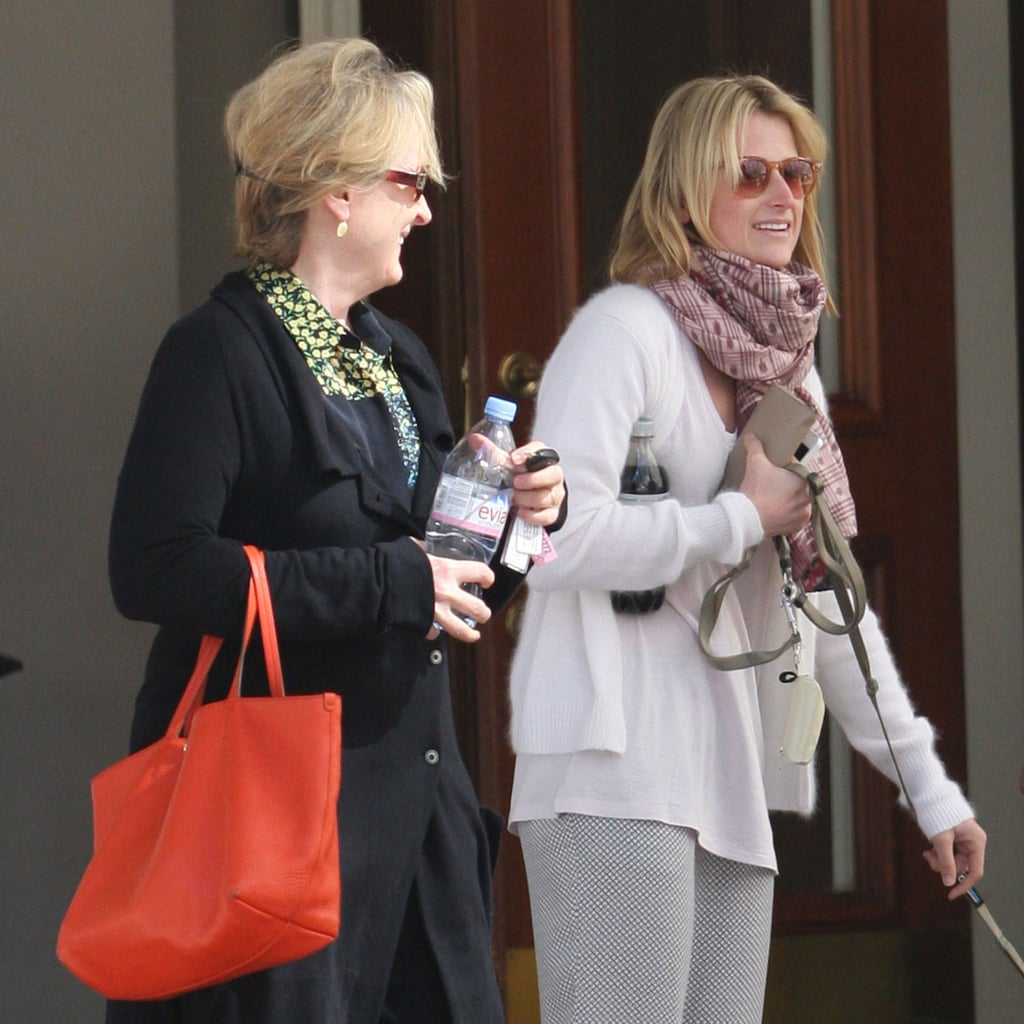 Meryl Streep With Her Daughter After Divorce