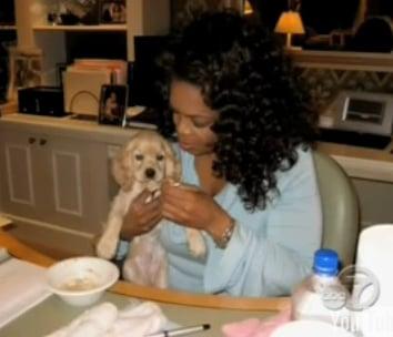 One of Oprah's Dogs Killed by Virus, Sadie Seeking Treatment