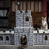 DIY a magical castle.