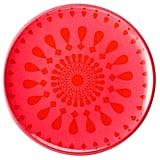 Summer Melamine Salad Plate Set of 8 - Red ($15)