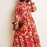 Rosalita Sheer Maxi Dress