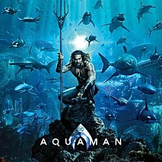 Aquaman Movie Poster Memes July 2018