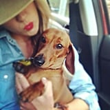 Jesinta Campbell kept close to a super-cute companion, and kept stylish with a cherry-red lip! Source: Instagram user Jesinta_campbell