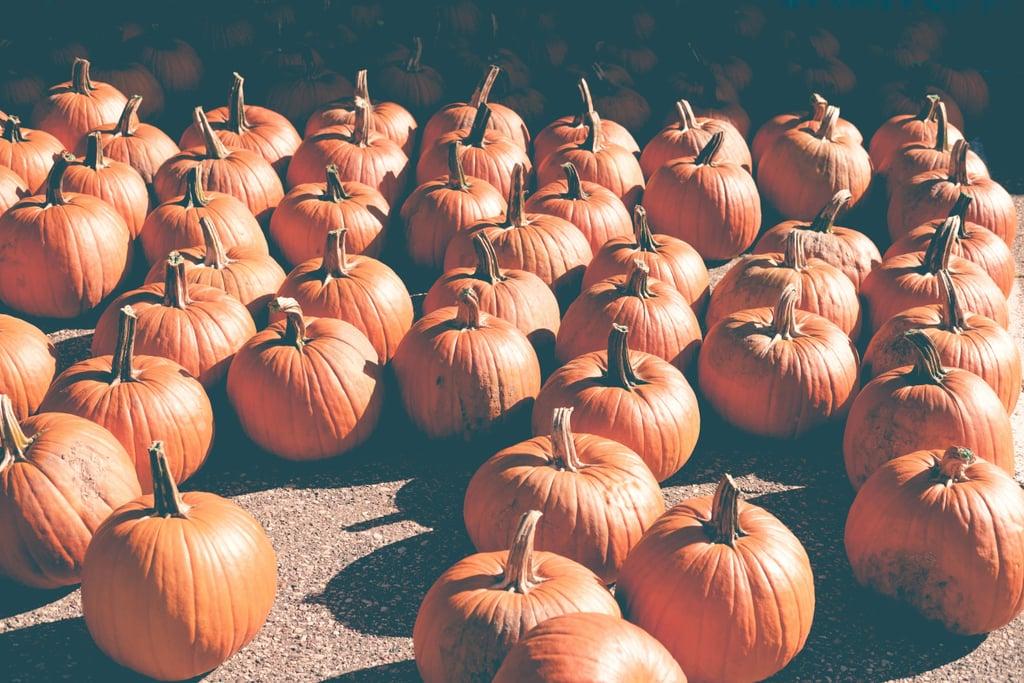Tweets About Pumpkin Spice Flavor