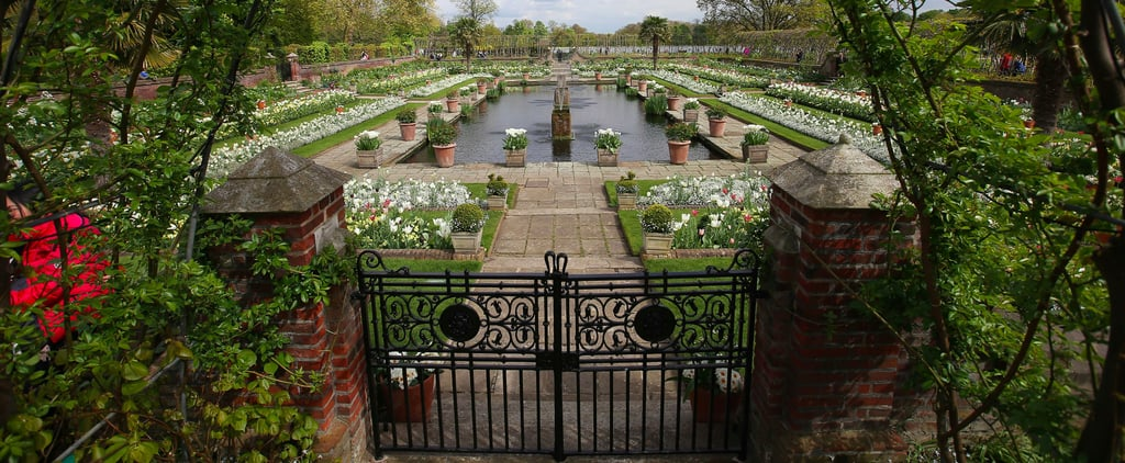 The Royal Gardener Just Revealed the Touching Reason Princess Diana's Garden Is All White
