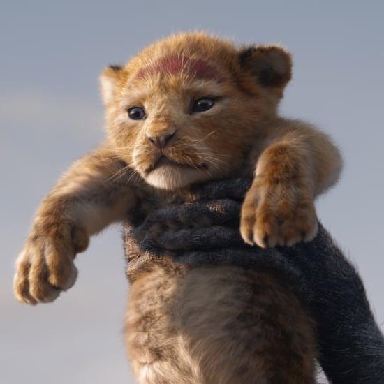 The Lion King Celebration at Disney California Adventure