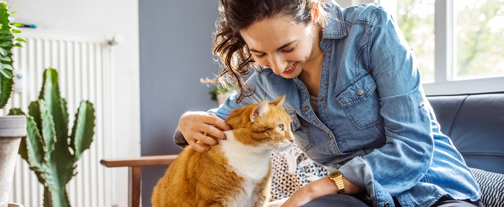 Why Getting My Pets Made Me Feel Like an Adult