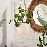 "Cylinder Ceramic 6"" Hanging Planter"