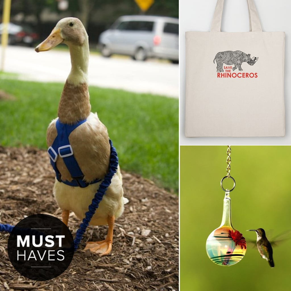Celebrate National Pet Month With Our May Must Haves