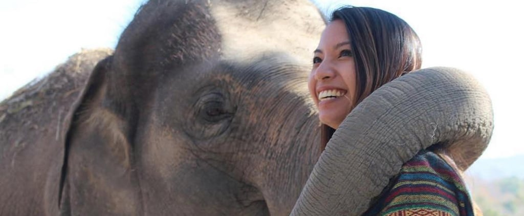 This Elephant Sanctuary in Thailand Is Not Only an AMAZING Place to Visit — It's Saving Animals
