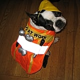 Howl-oween: North's a Dog At Work