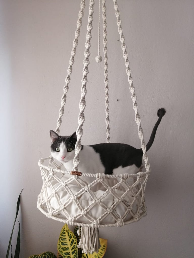 These Beautiful Macramé Cat Beds Look Like Home Decor!