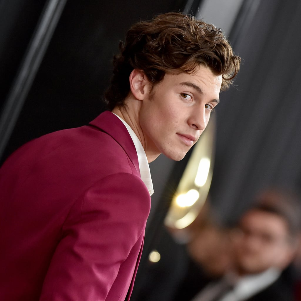 Shawn Mendes Just Cut His Hair, and Twitter is Divided
