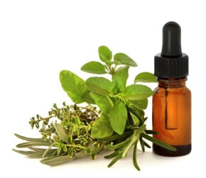 Herbal Supplements to Aid Focusing