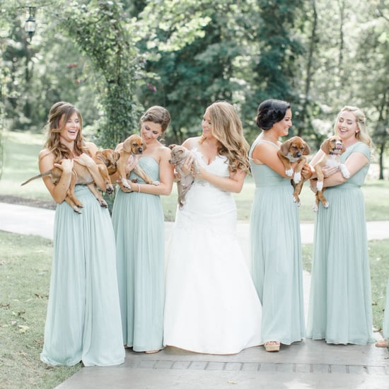 Bride Uses Puppies in Wedding Photos