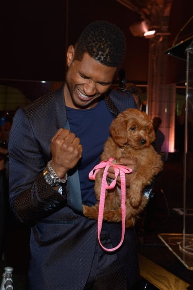 Usher Usher bid $12,000 for a Goldendoodle puppy in NYC in October 2012 and named her Poppy.