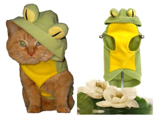 Cats' Costume Ideas . . . Can't Get Much Cuter Than This!