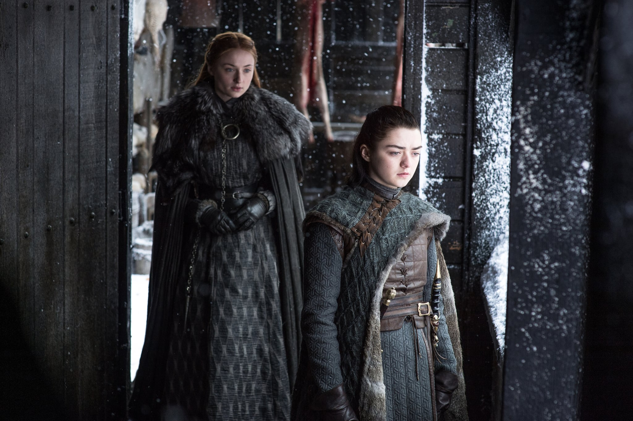 Image result for sansa and arya