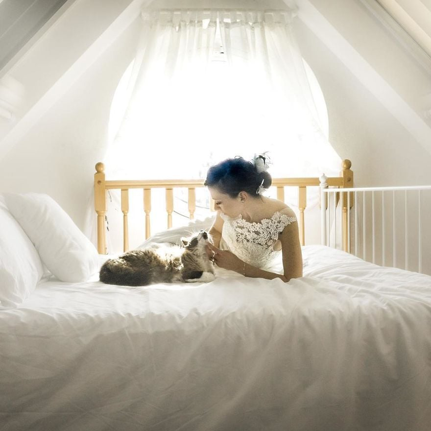 Drop Everything You're Doing and Look at These Wedding Photos Featuring a Couple and Their Cats