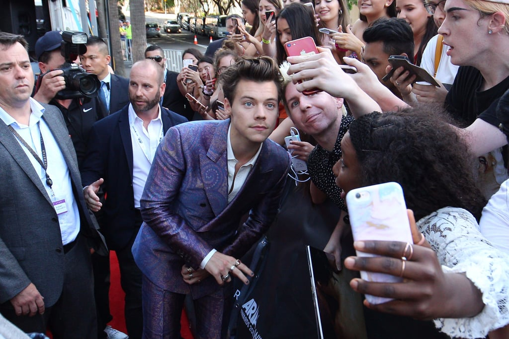 You Guys! Harry Styles' Hair Just Walked the ARIAs Red Carpet